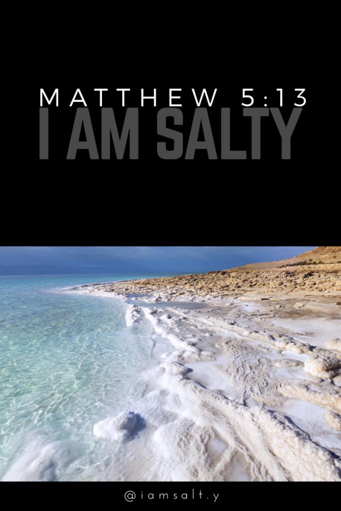 Marinate in Matthew 5:13